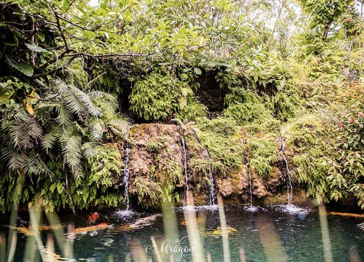 patch of heaven sanctuary waterfall