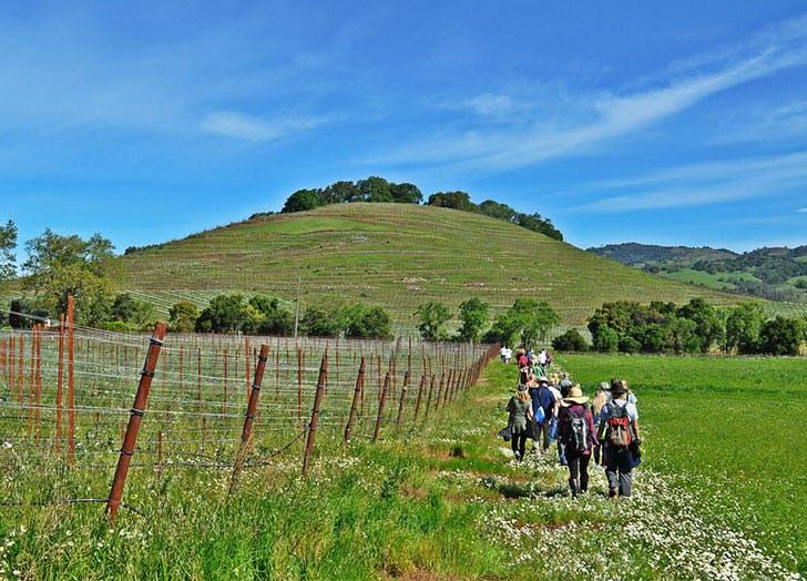 people hiking sf hill