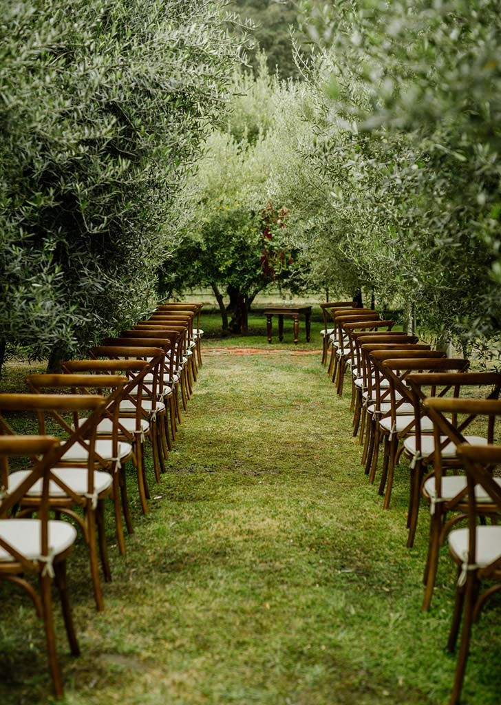 vineyard ceremony bustro chairs