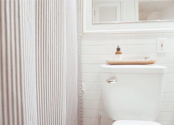 bathroom toilet shower curtain