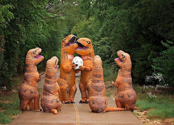 dinosaur pregnancy announcement