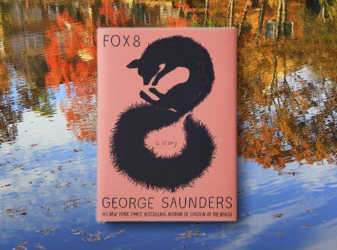 fox 8 george saunders