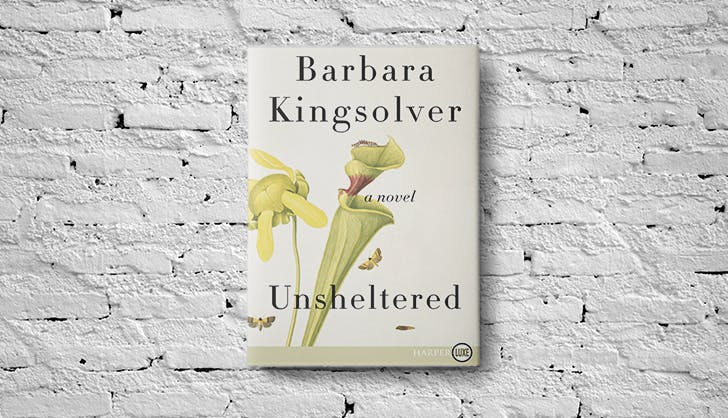 Everybodys Jersey-Bound in Barbara Kingsolvers New Novel