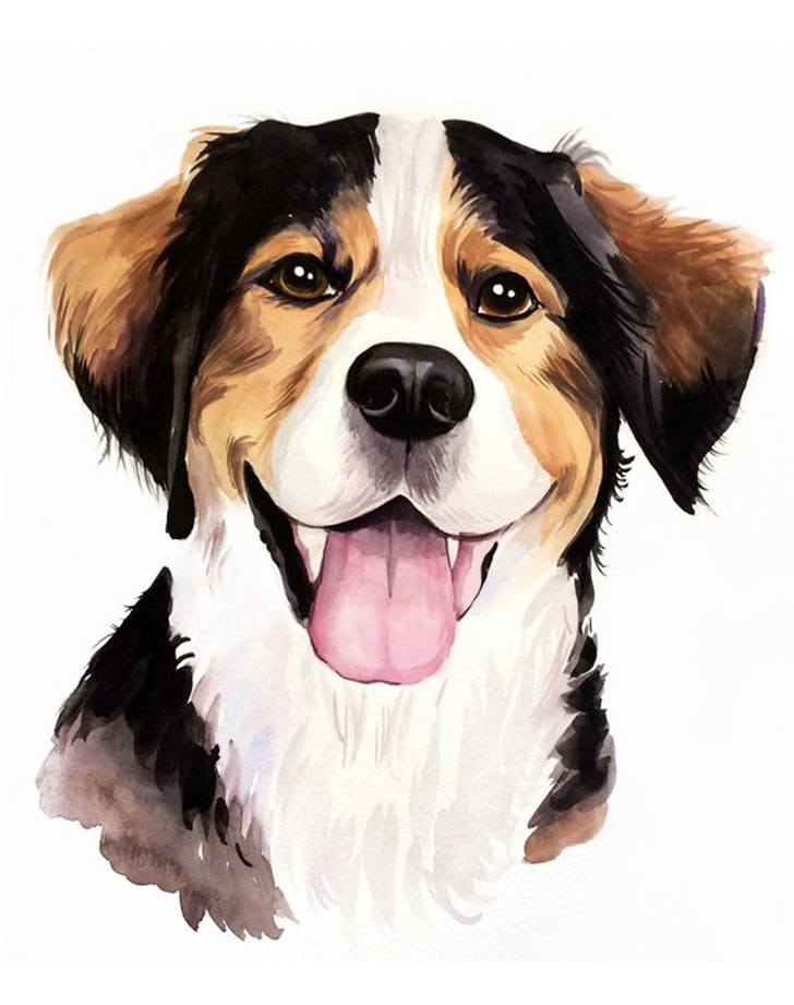 watercolorhappypet etsy pet portraits