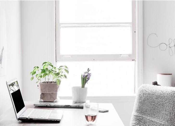 window light desk laptop