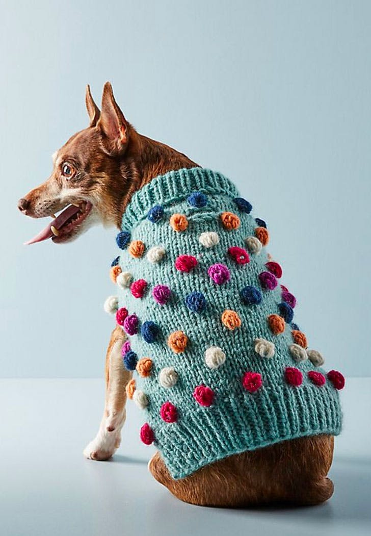 anthropologie dog sweater