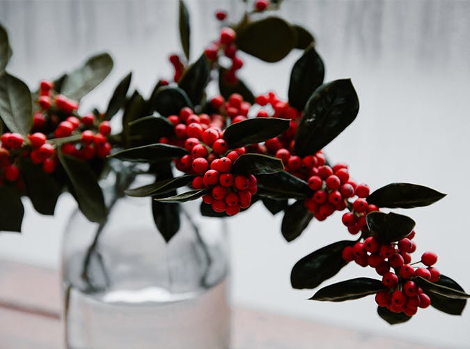 holiday decorations hollyberry vase
