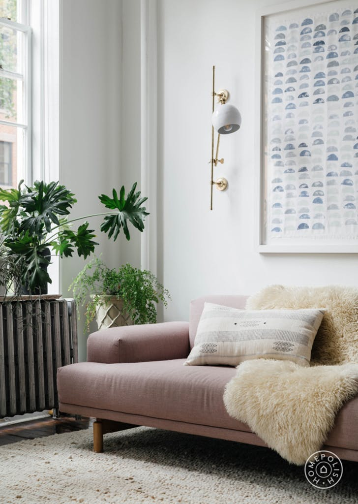 homepolish room lush plants
