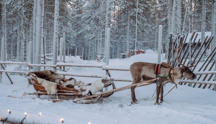 rovaniemi finland in winter