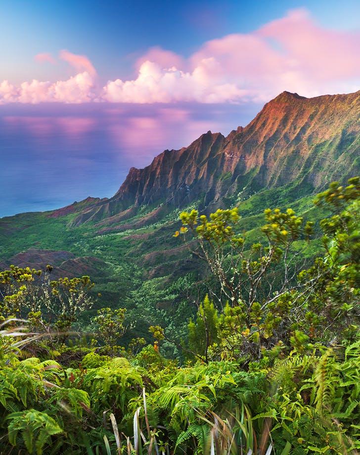 Kauai  Hawaii in winter