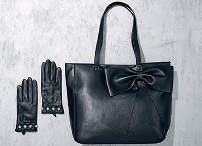kl cat bag gloves