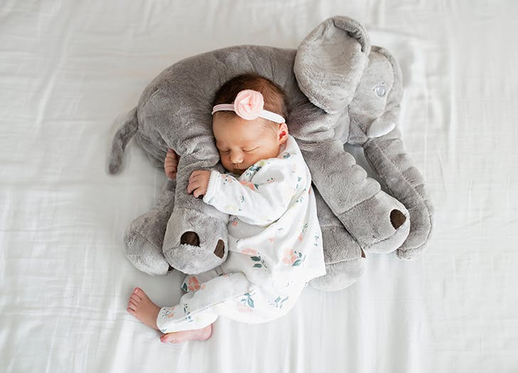 newborn baby girl with elephant toy