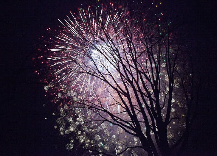 prospect park fireworks nye