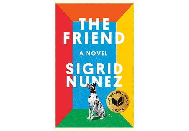 the friend sigrid nunez