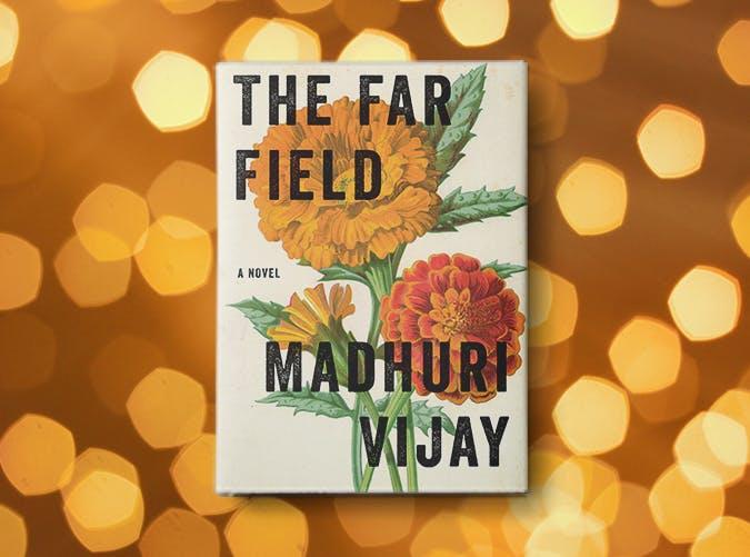 the far field madhuri vijay
