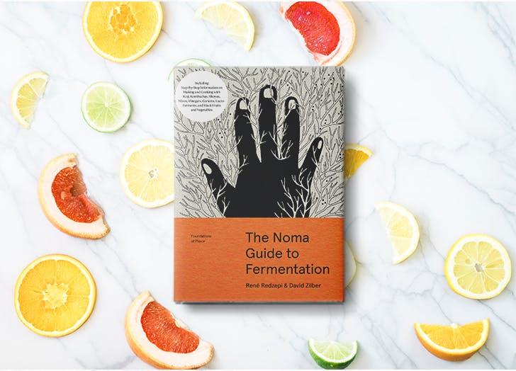 the noma guide to fermentation rene redzepi