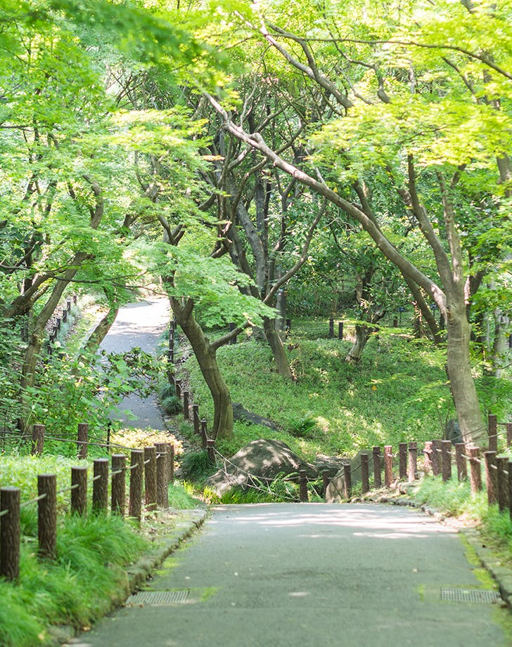 things to do in tokyo 7