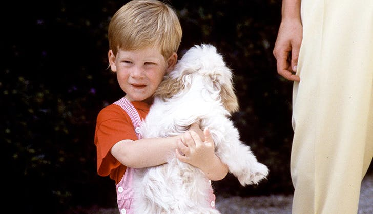 young prince harry holding a dog