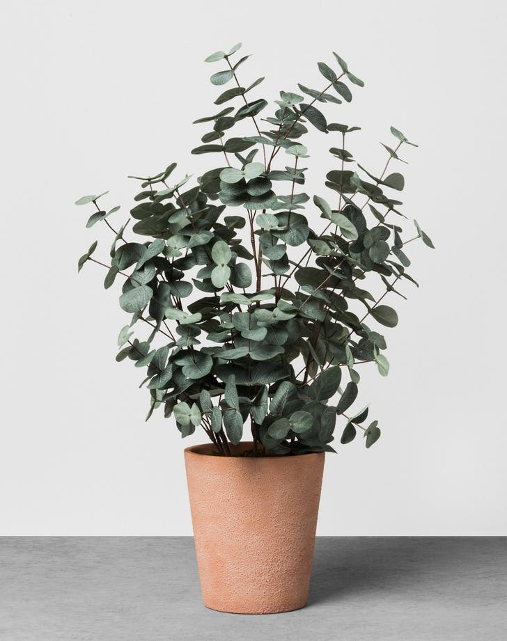 Hearth and Hand Faux Eucalyptus Plant