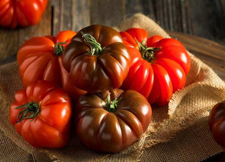 Red Beefsteak Tomatoes