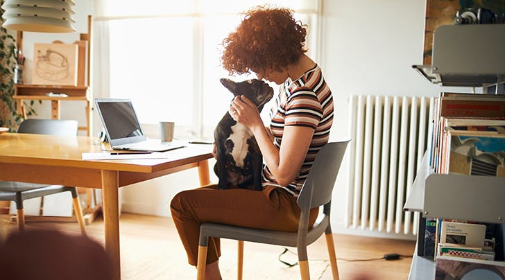 Have a Pet? Try Finding a Job That Offers This