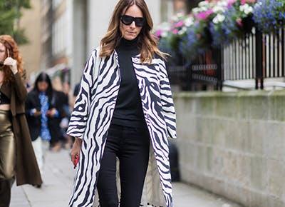 zebra print trend 400