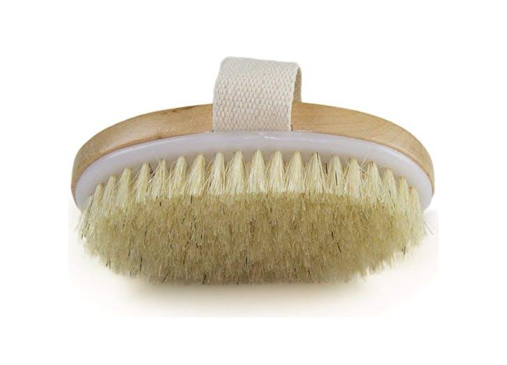 a dry brush