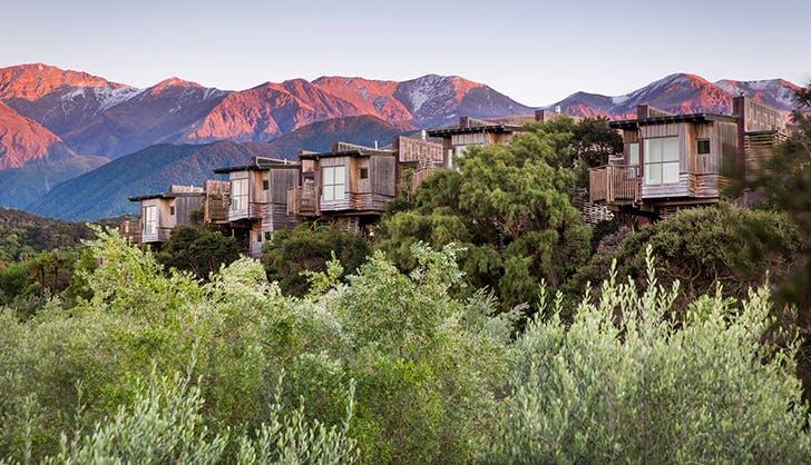 Hapuku Lodge Tree Houses in Kaikoura New Zealand