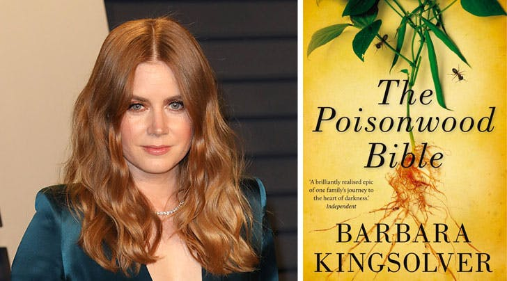 Move Over, 'Sharp Objects': Amy Adams Is Headed Back to HBO with 'The Poisonwood Bible'
