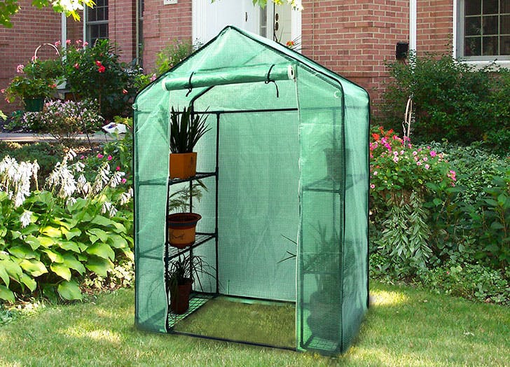 Amazon Is Selling a Pop-Up Greenhouse (and Its Only $50)