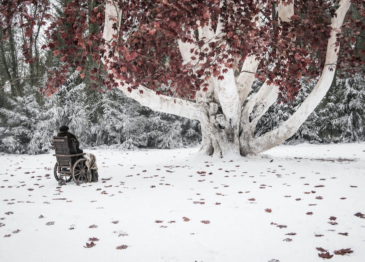 Bran out by the tree Game of Thrones
