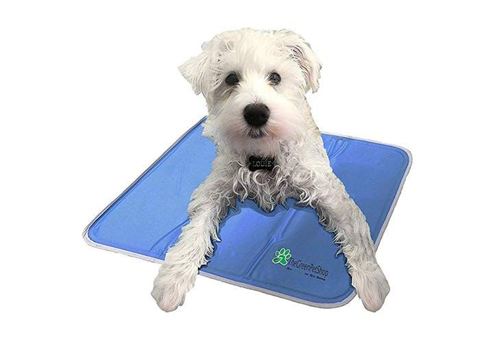Green Pet Shop Dog Cooling Mat