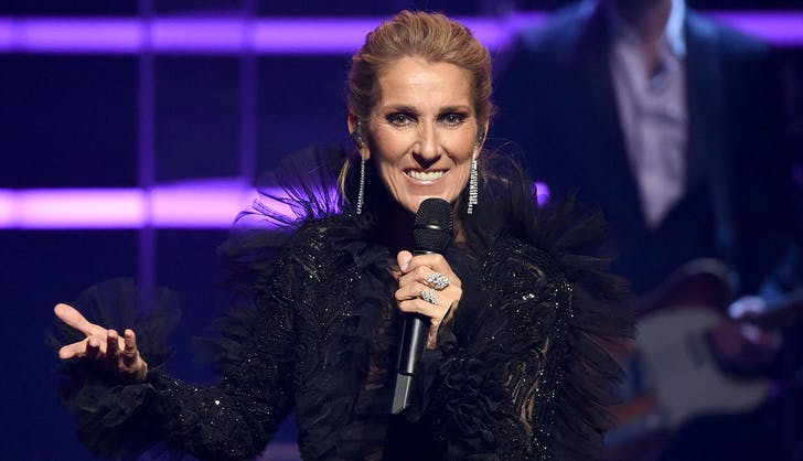 celine dion greeting the crowd concert