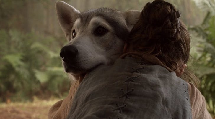 These Are the Most Common 'Game of Thrones' Characters People Are Naming Their Dogs After