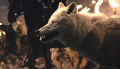 ghost battle of winterfell 15565150401