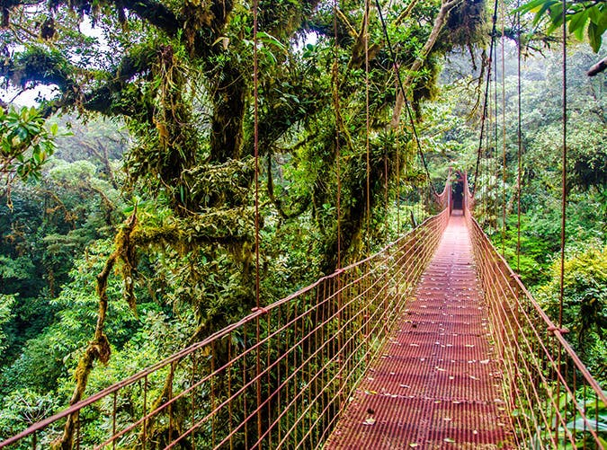 most beautiful places in the world monteverde costa rica