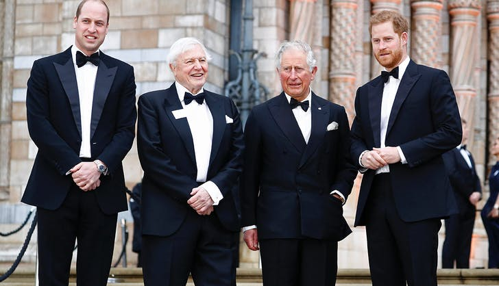 prince harry prince william prince charles our planet premiere