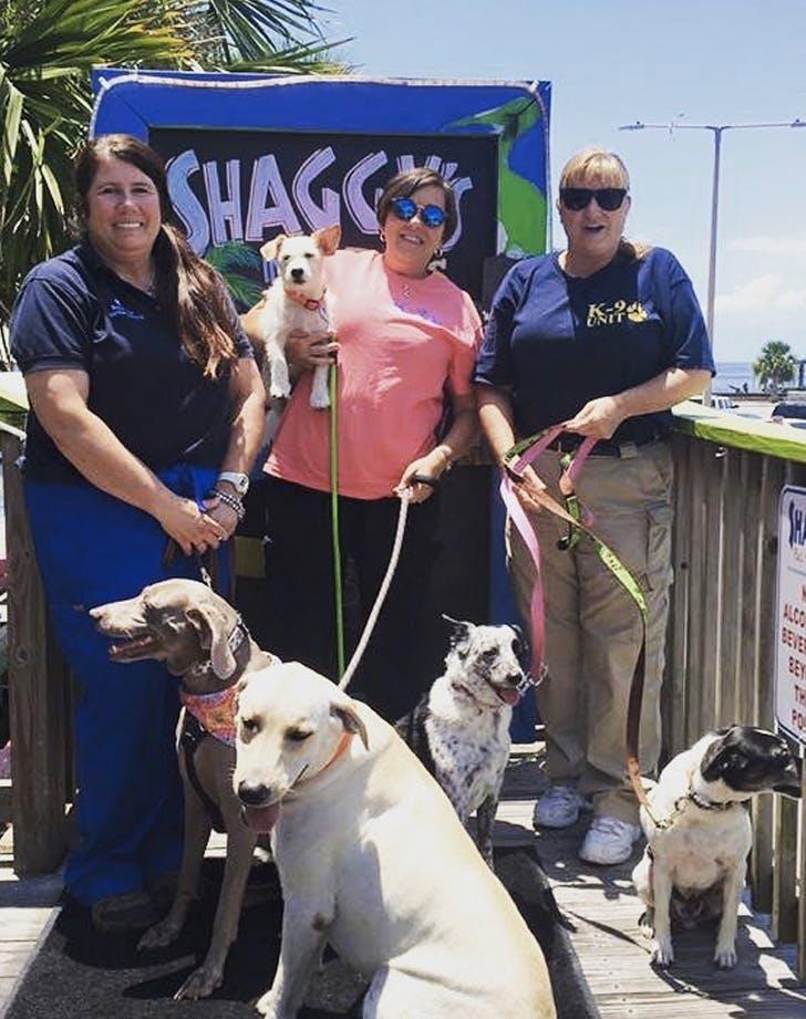 shaggys mississippi dog friendly bar