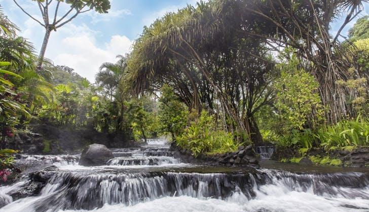 Tabaco  769 n Thermal Resort   Spa