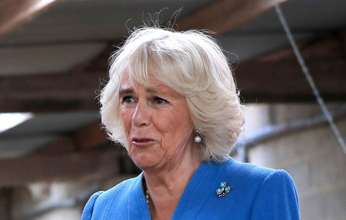 Camilla Parker-Bowles Petting a Lamb Makes Her Our New Favorite Royal