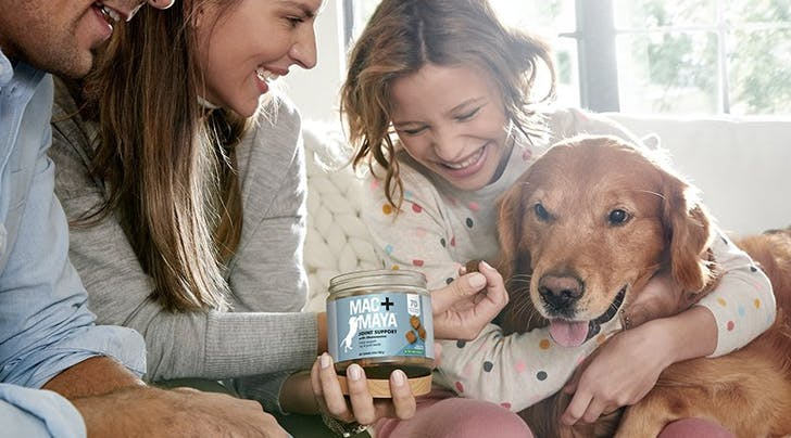 The New Dog Supplement Everyone's Talking About