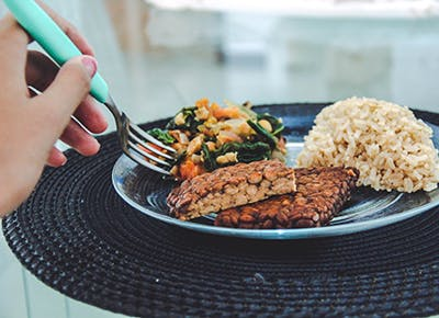 tempeh on plate with rice 400