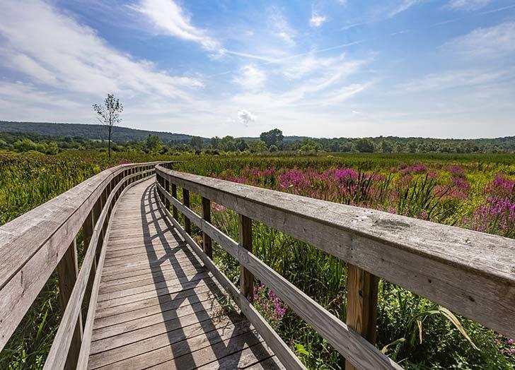 appalachian trail pauling ny