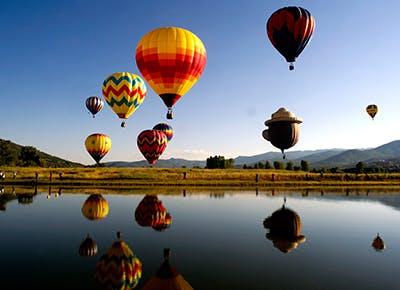hot air balloon rodeo cat