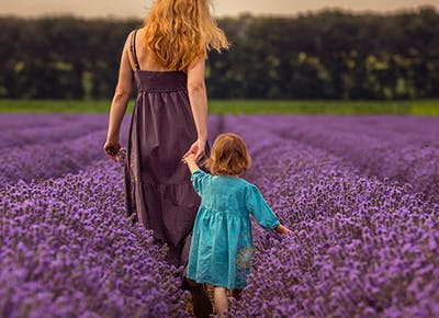 mom and daughter in lavender field 400