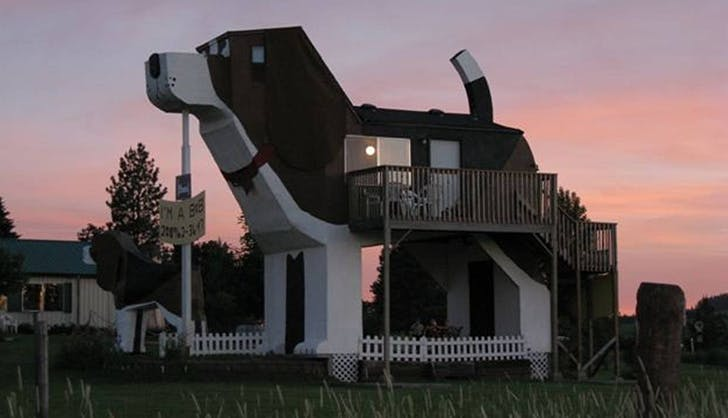 15 Incredible Dog-Friendly Airbnbs