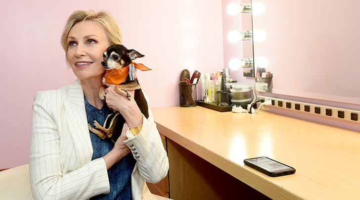 The One Thing Jane Lynch Wants Every Dog Owner to Know