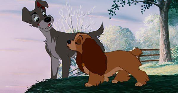 Disney Cast A Rescue Dog In Lady The Tramp Purewow