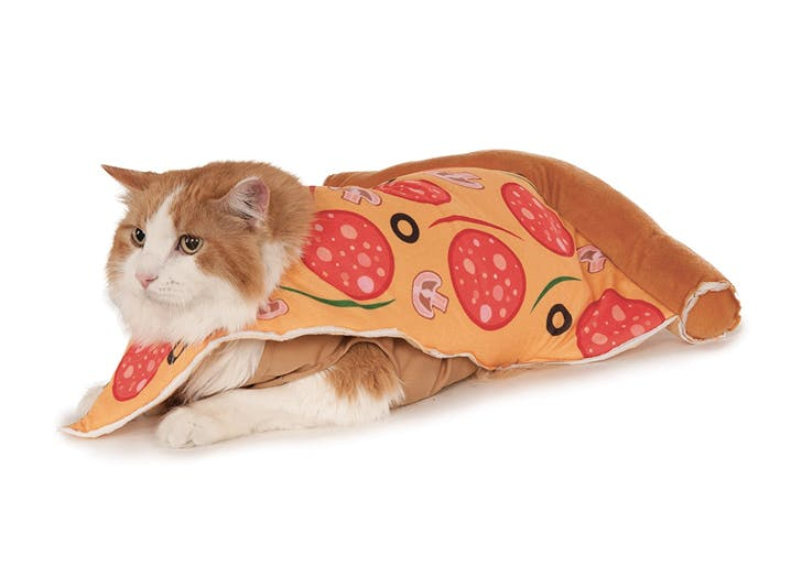 cat halloween costumes pizza