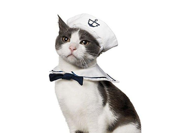 cat halloween costumes sailor